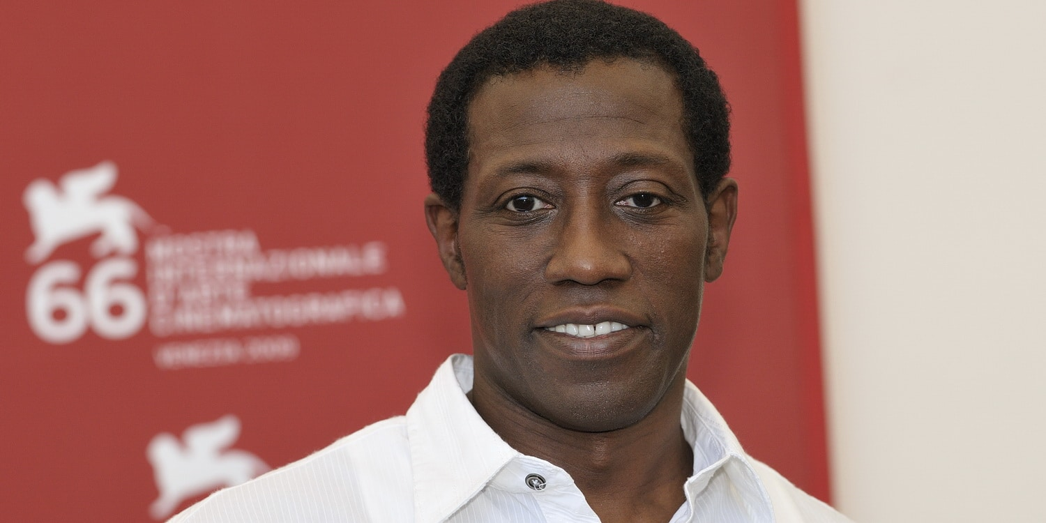 celebnetworth celeb wesley snipes worth