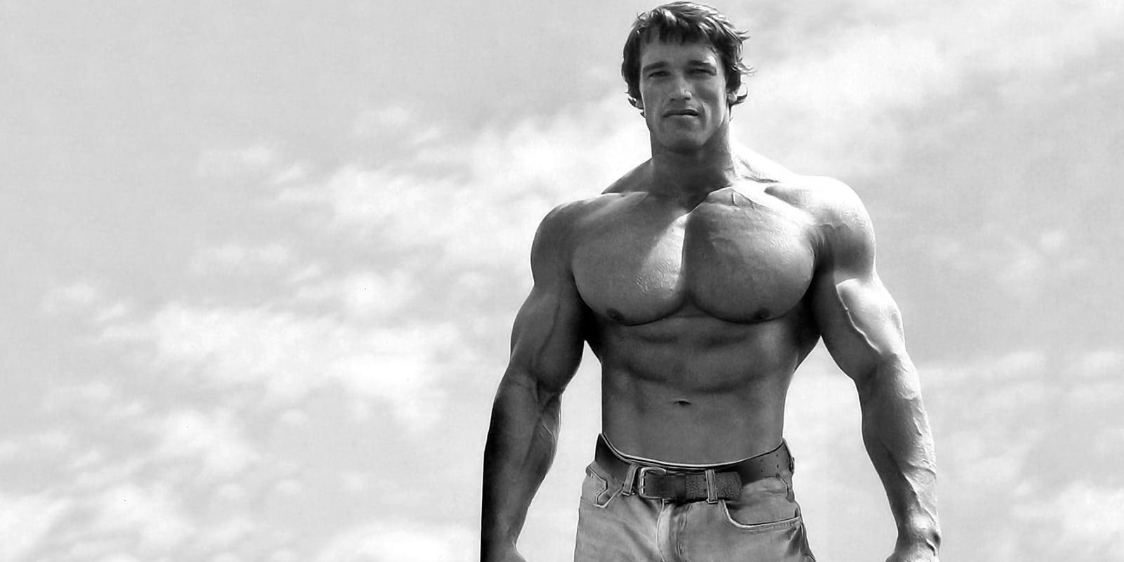 Arnold Schwarzenegger Net Worth, Salary, Income & Assets ...