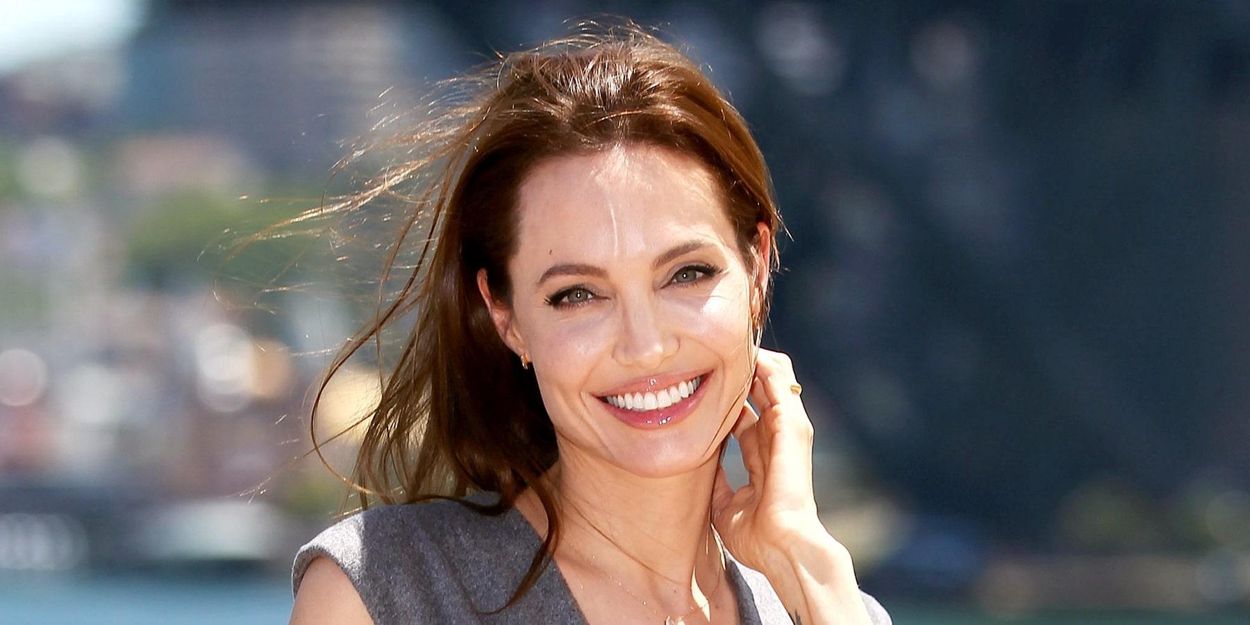 Angelina Jolie Net Wor...