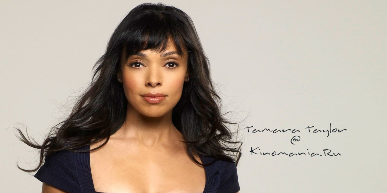 tamara taylor net worth 2018 wiki married family
