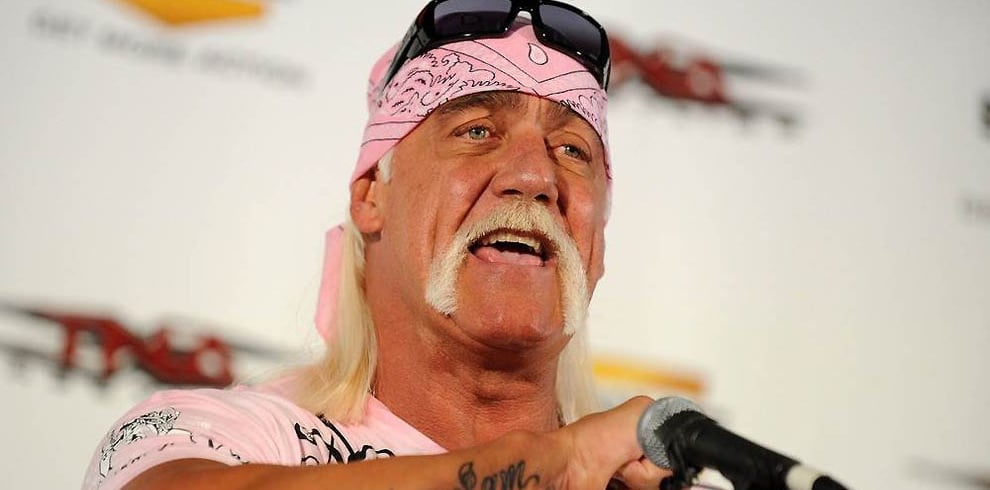 Hulk hogan celebration-8379