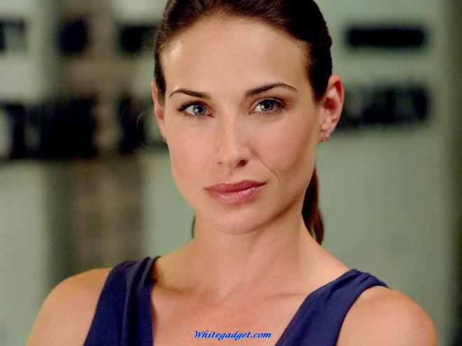 Claire Forlani Net Worth