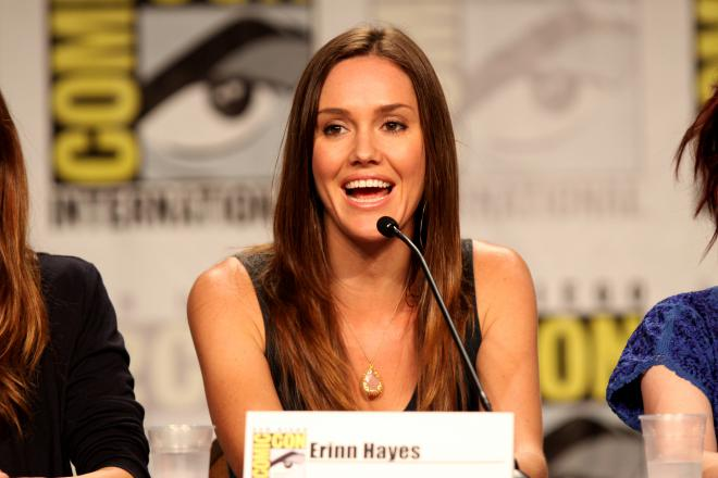Erinn Hayes Net Worth