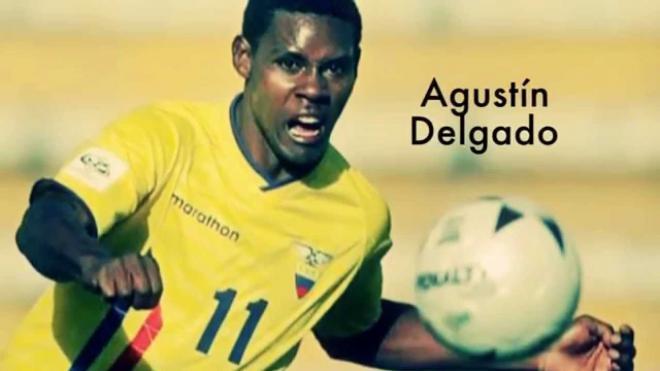 Agustín Delgado Net Worth