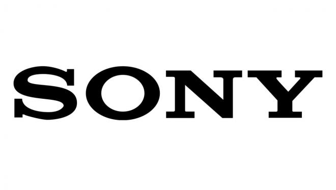 Sony Net Worth