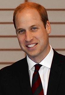 Prince William Net Worth 2017 2016 Biography Wiki